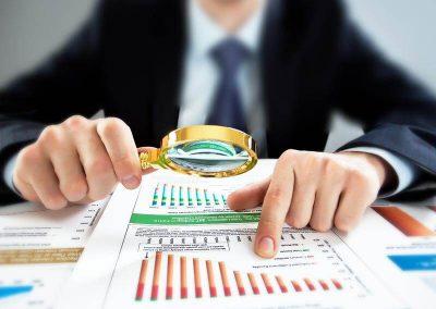 Auditorías de Fraude